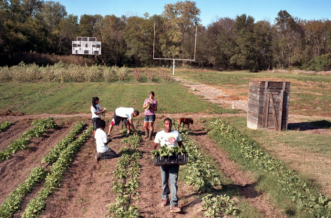College Turns Its Own Football Field Into An Organic Farm & Sees Students Transform